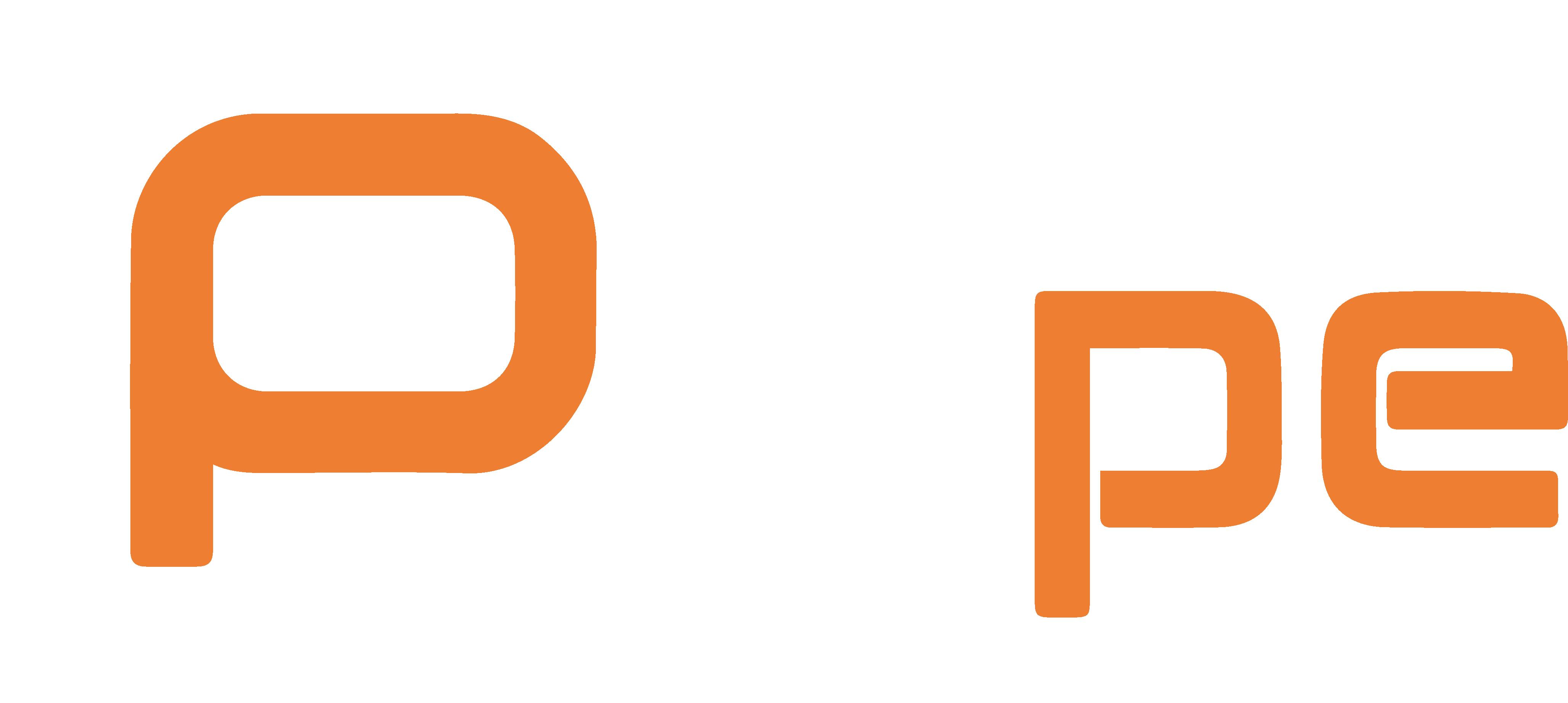 Pype Footer Logo